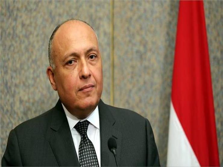 شكري يؤكد موقف مصر الثابت من دعم حقوق الشعب الفلسطيني