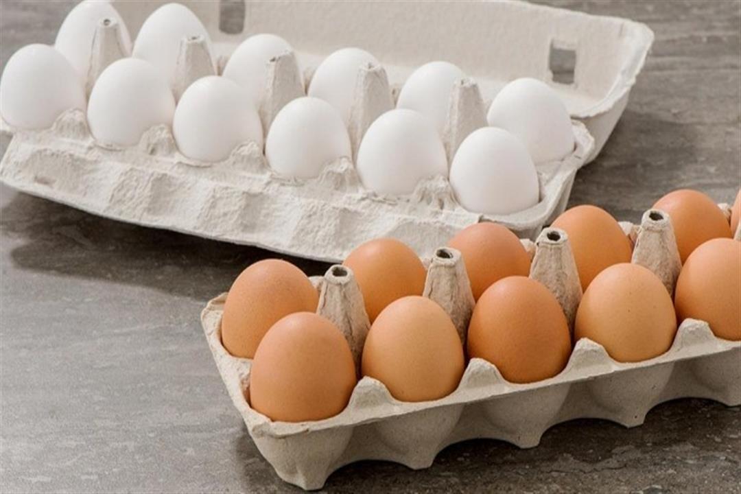 خدعوك فقالوا.. البيض البني أكثر فائدة من الأبيض
