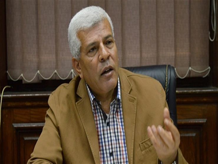 نقيب الزراعيين: إنتاج مصر من الزيوت يصل إلى 10%