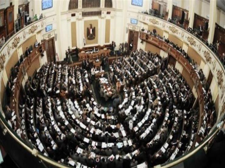 برلماني يثمن تأسيس مجلس الدول العربية الإفريقية المطلة على البحر الأحمر وخليج عدن