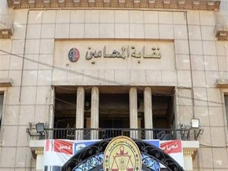 4 مرشحين على مقعد النقيب في انتخابات المحامين الفرعية بالمنيا