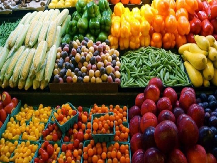 البنك الدولي: 60% من صادرات مصر الزراعية غير مستغلة.. وهذه أبرز الأسباب