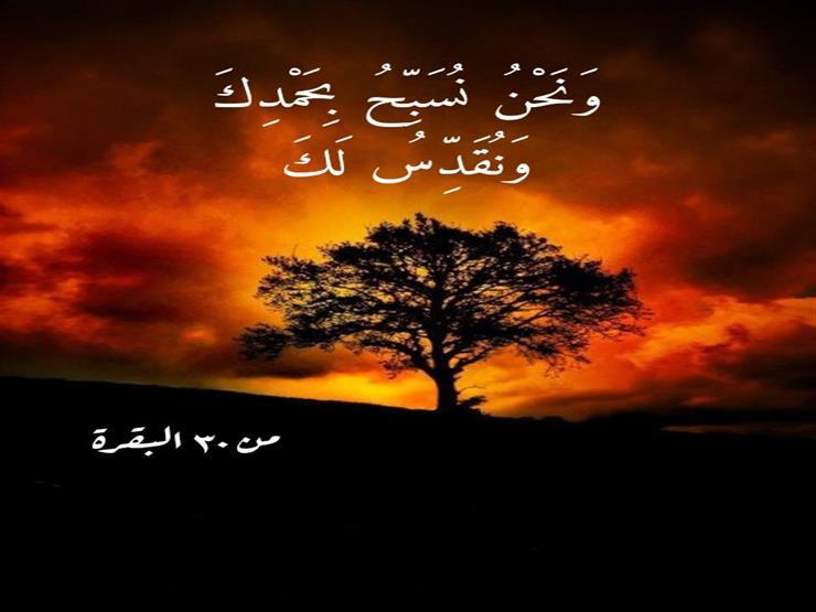 من معاني القرآن.. معنى قول الملائكة في سورة البقرة: {وَنُقَدِّسُ لَكَ}