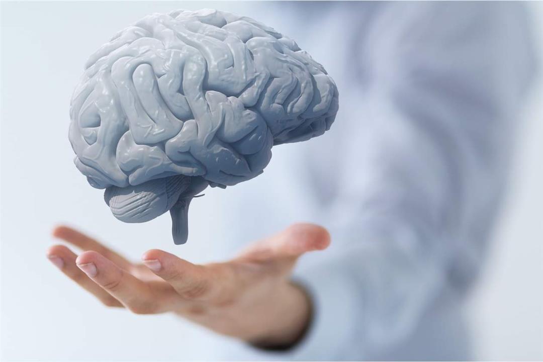 منها القهوة.. 4 عوامل قد تسبب تقلص الدماغ
