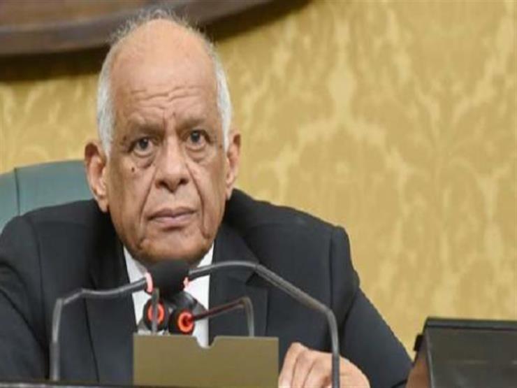 عبدالعال يحيل 4 اتفاقيات دولية إلى اللجنة التشريعية