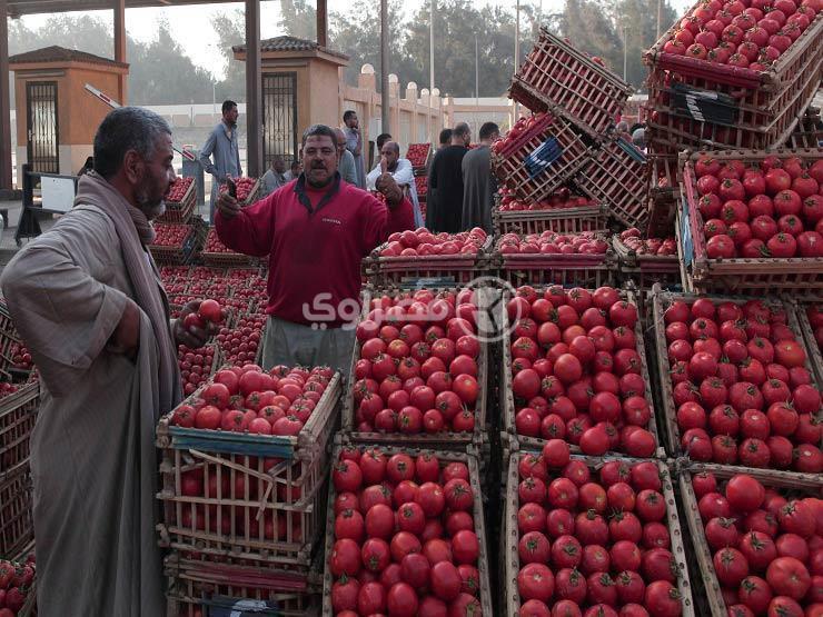 للشهر الثاني على التوالي.. التضخم الشهري بمصر يرتفع إلى 0.6% في مارس