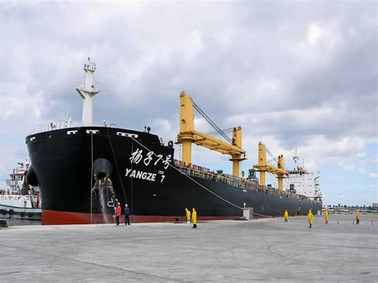 25 سفينة إجمالي حركة التداول بميناء دمياط