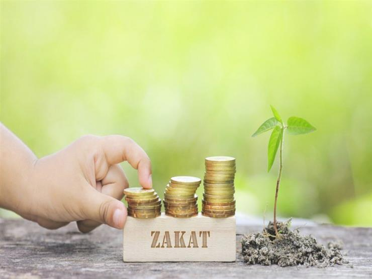 الفرق بين زكاة الفطر وزكاة المال والصدقة.. تعرف عليه من البحوث الإسلامية