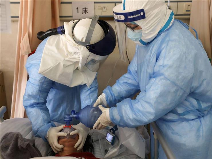 علماء أستراليون يكتشفون كيف يحارب جهاز المناعة فيروس كورونا