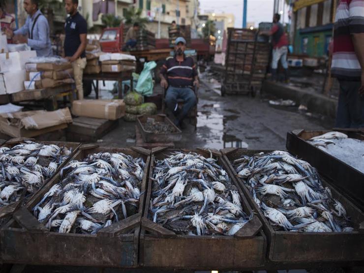 أسعار المأكولات البحرية والأسماك في سوق العبور الاثنين 23-3-2020