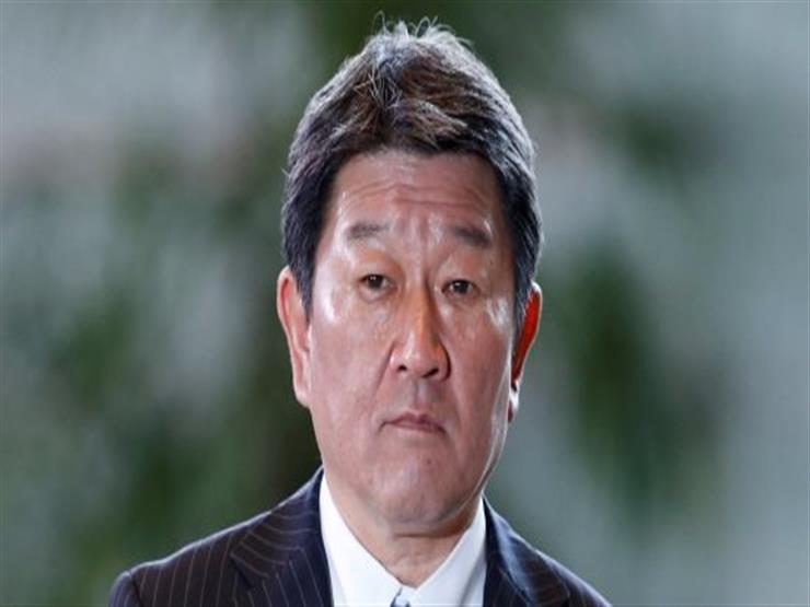 وزير خارجية اليابان يثمن الدور المصري بشأن التطورات الأخيرة للقضية الفلسطينية