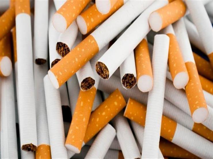 ضبط سجائر مجهولة المصدر في حملات تموينية بالإسكندرية