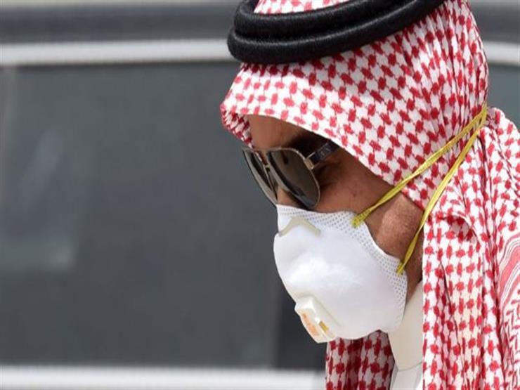 الإمارات: صندوق الأزمات ينقذ الناشرين المتضررين من كورونا ماليا