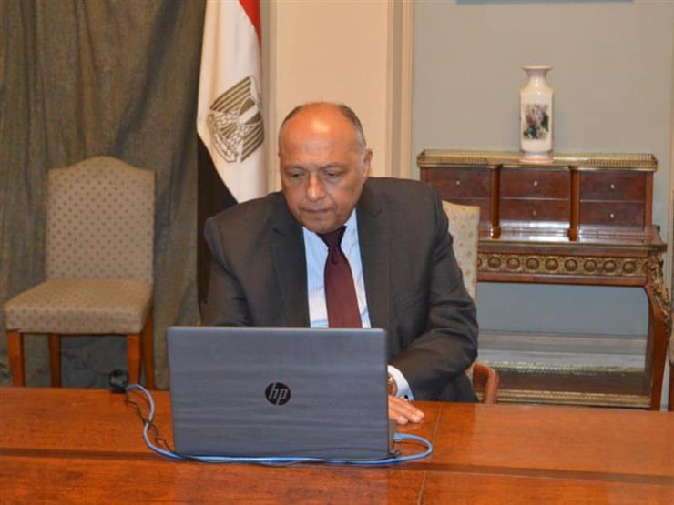 شكري: حل الدولتين في فلسطين وسيلة لإنهاء الصراع في الشرق الأوسط
