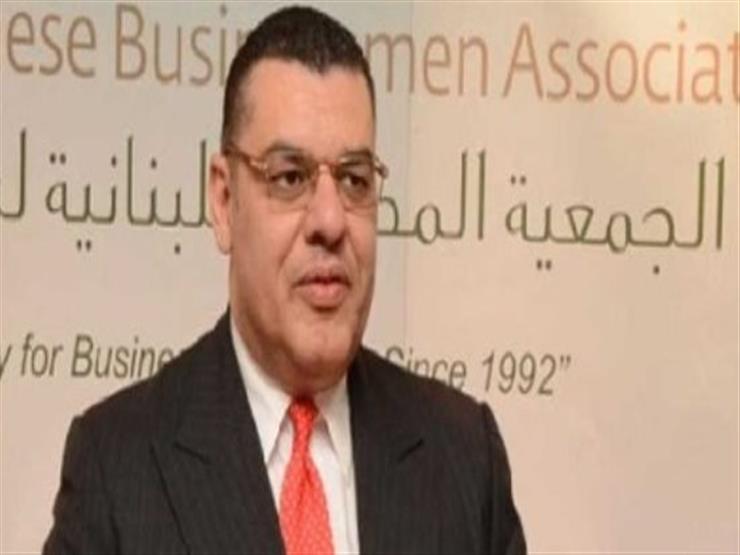 السفير المصري ببيروت يبحث مع وزير الطاقة اللبناني آخر تطورات تصدير الغاز للبنان