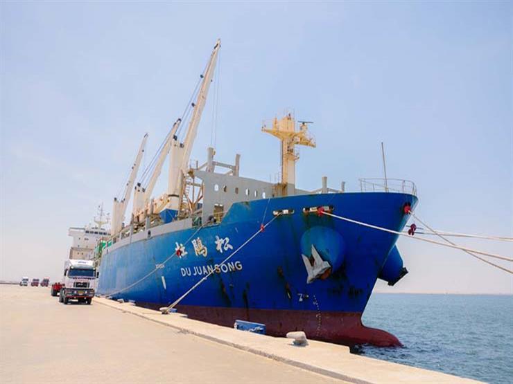 تداول 28 سفينة في موانئ بورسعيد