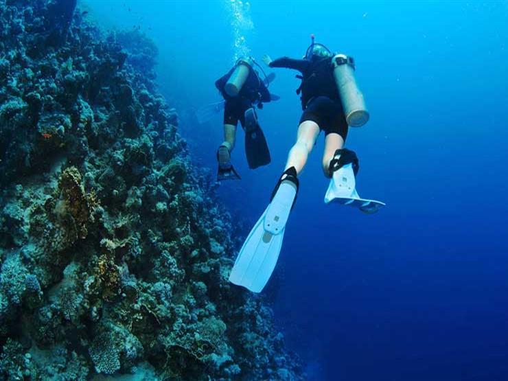 بداية من الغد.. تفاصيل استئناف نشاط الغوص جزئيًا بجنوب سيناء