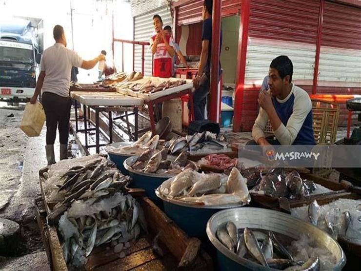 """""""البوري"""" يقفز إلى 60 جنيهًا في سوق السمك بدمياط"""