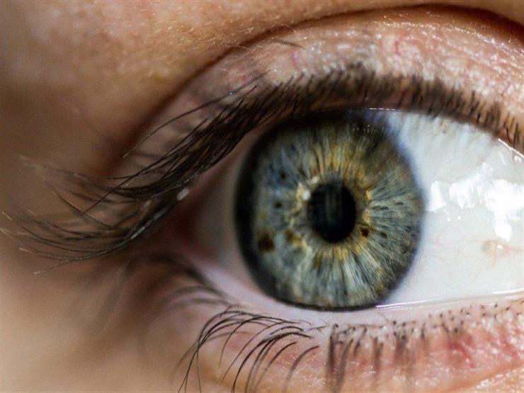 منها البيض.. أطعمة تساعد على تحسين الرؤية