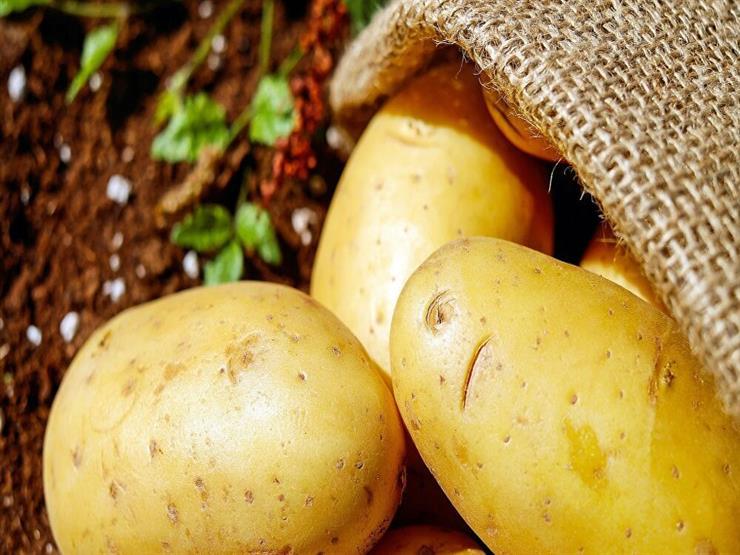 """الزراعة: فيروس """"كورونا"""" سبب أزمة انخفاض أسعار البطاطس"""