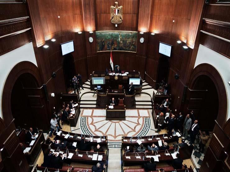 طارق عبدالعزيز: مجلس الشيوخ سيخفف من أعباء مجلس النواب