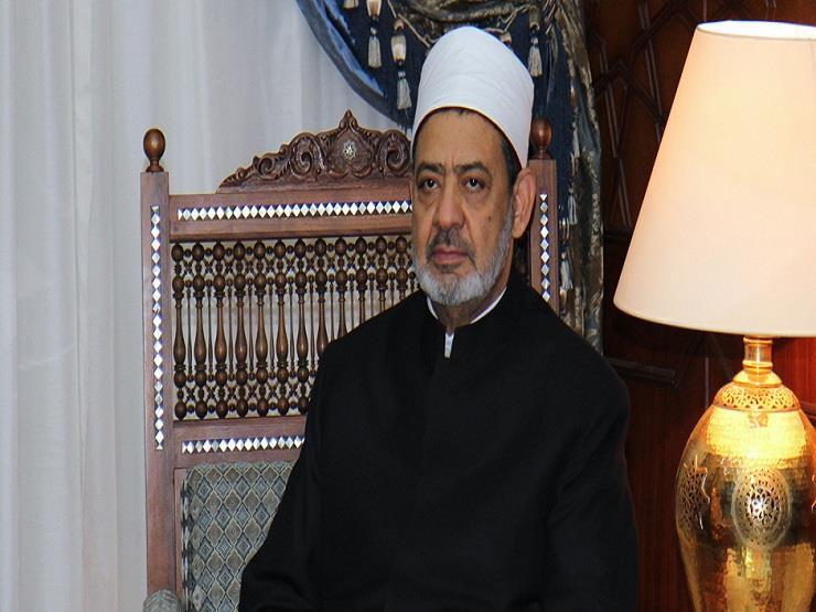 """""""مسيرة تسامح وسلام"""".. جهود الإمام الطيب الفكرية والإنسانية منذ توليه المشيخة (3)"""