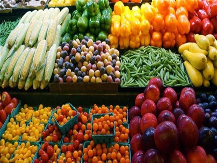 رغم كورونا.. صادرات مصر الغذائية ترتفع لـ 3.2 مليار دولار في 11 شهرًا