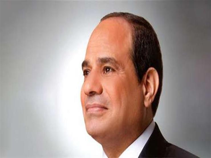 السيسي يوجّه بتطوير البنية الأساسية للكهرباء في قرى الريف المصري
