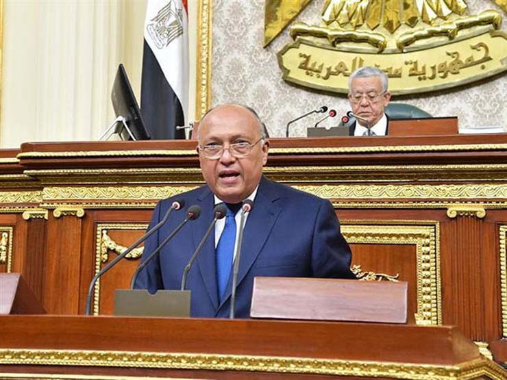 وزير الخارجية: ننسق مع الشركاء لموافاتهم بأحدث المعلومات حول التنظيمات الإرهابية والإخوانية