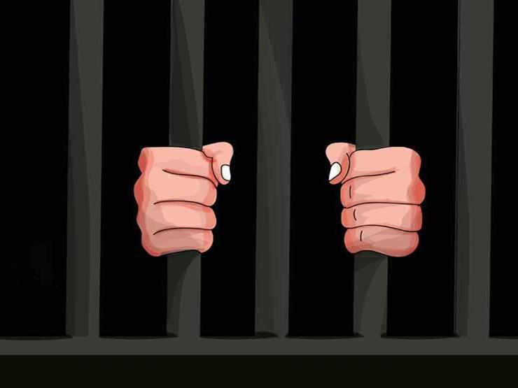 استمرار حبس خادمة وصديقها بتهمة سرقة سيارة شقيقة روبي