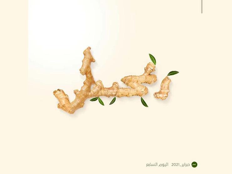 """في فبراير.. كيف تحول """"حبراير"""" إلى تحدي ممتع لعشاق الخط العربي؟"""