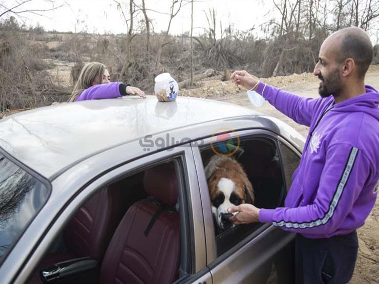 بالصور- بسيارتهما الخاصة.. زوجان يطلقان خدمة لتوصيل الحيوانات الأليفة