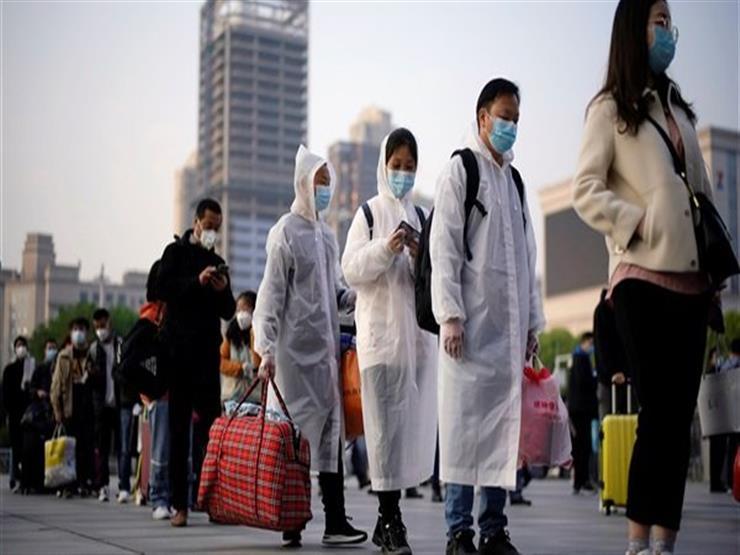 الكشف عن سبب تفشي فيروس كورونا في الصين.. هل للخفافيش علاقة؟