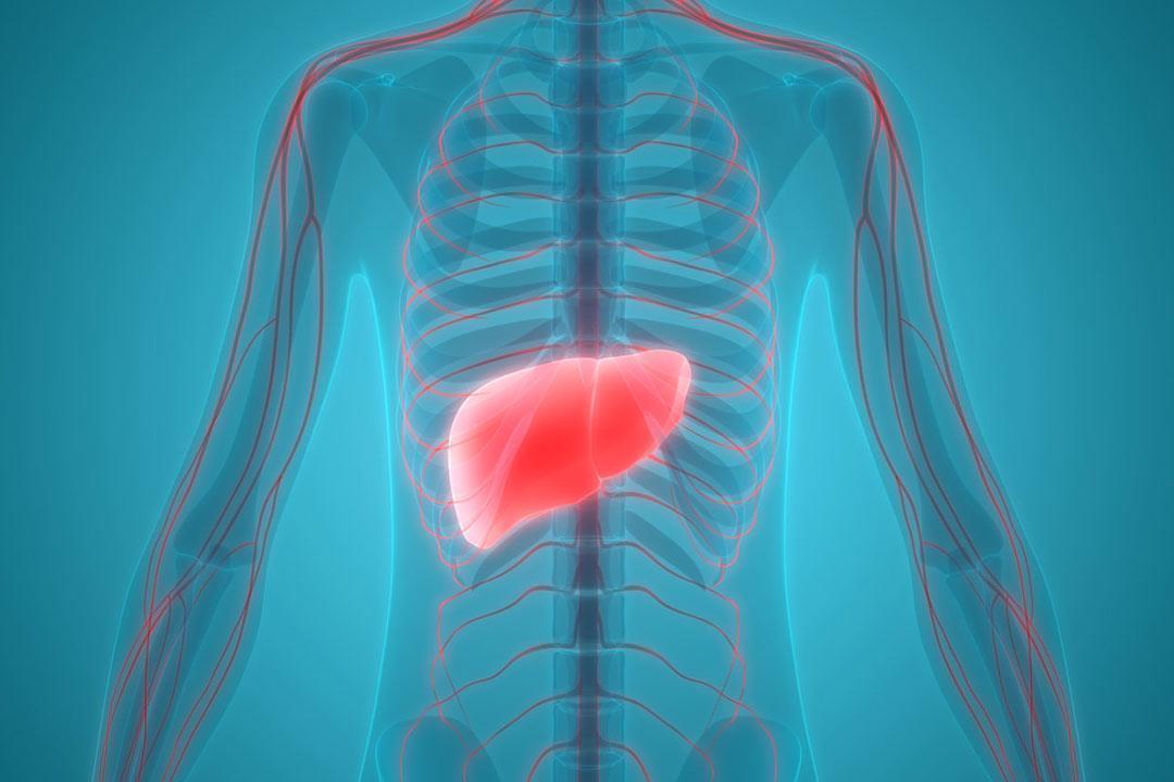 نصائح ضرورية للوقاية من فشل الكبد