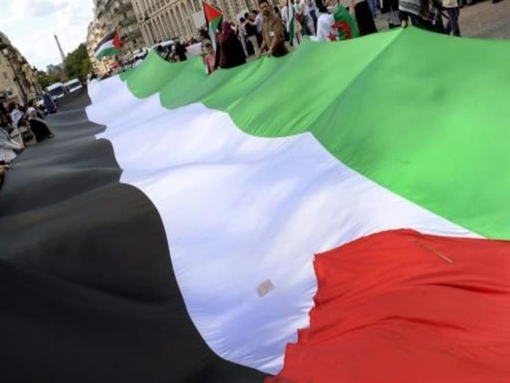 إصرار على تظاهرة مؤيدة للفلسطينيين في باريس رغم حظرها.. ومخاوف من صدامات