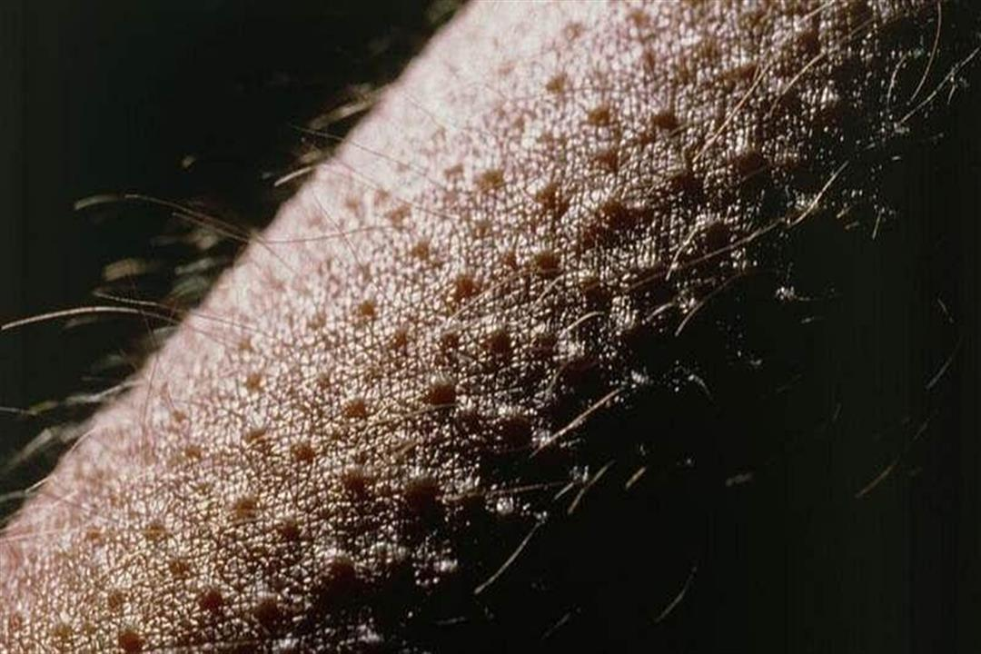 شعور مفاجئ بالبرودة.. ماذا يحدث في جسمك عند القشعريرة؟ (فيديو جرافيك)