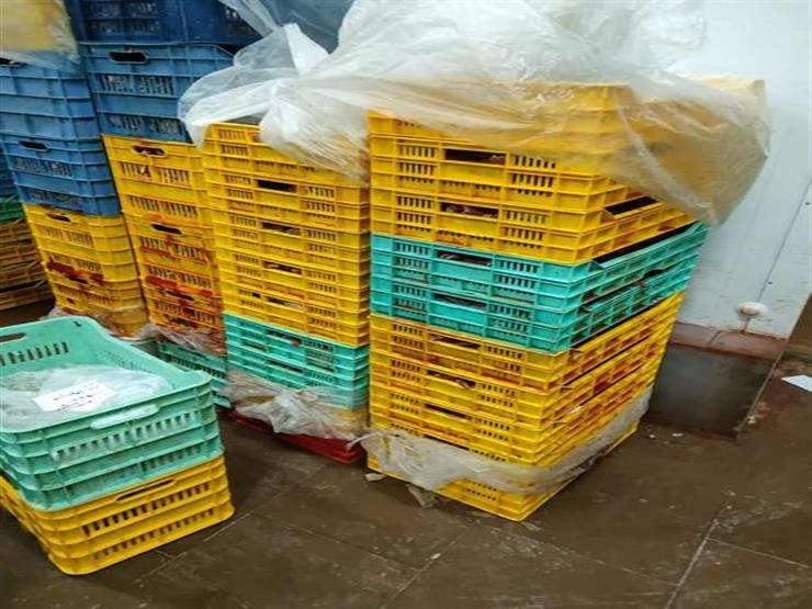 مصادرة 13 طن دواجن تشكل خطرا على الصحة العامة