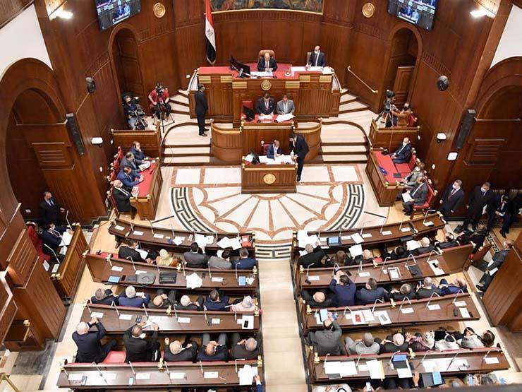 انطلاق الملتقى الأول لأعضاء الشيوخ عن تنسيقية شباب الأحزاب استعدادا لدور الانعقاد الثاني للمجلس