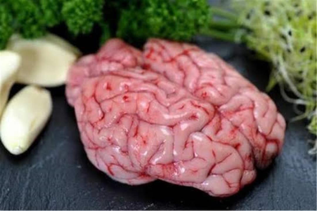 هل تفضل تناوله؟.. إليك فوائد وأضرار المخ