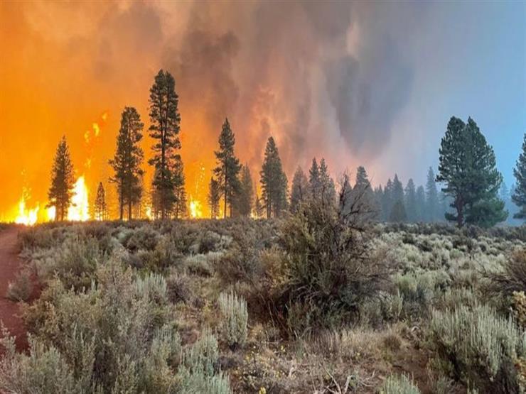 ارتفاع قتلى حرائق الغابات في تركيا إلى 8 أشخاص