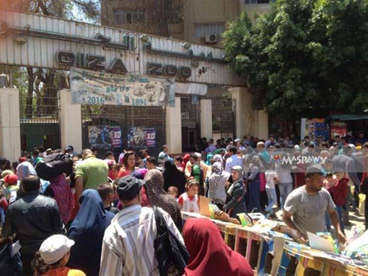 31 ألف زائر لحديقة الحيوان في ثاني أيام عيد الأضحى