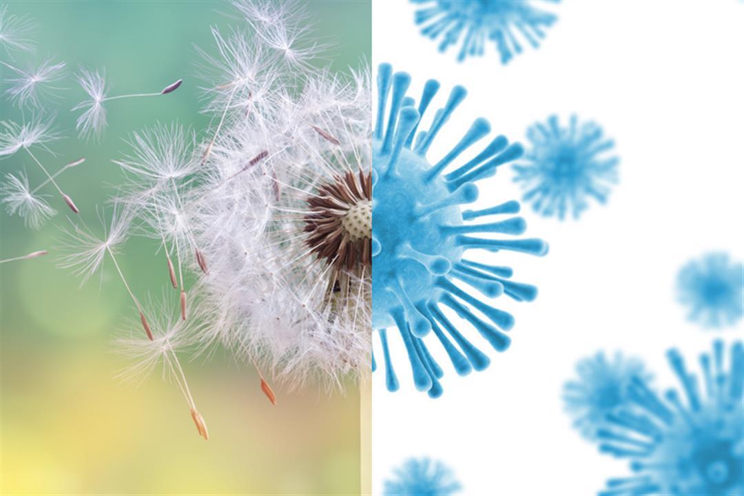 فيروس كورونا والحساسية الموسمية.. كيف نفرق بين أعراضهما؟