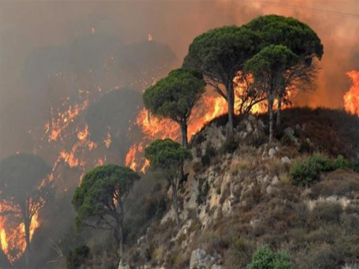 موجة حرارة شديدة تتسبب في اندلاع حرائق كبيرة في بلغاريا