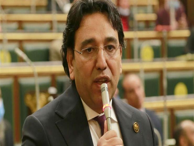 طلب برلماني بوضع خطة لإقامة صناعات تعتمد على المواد الخام المتاحة