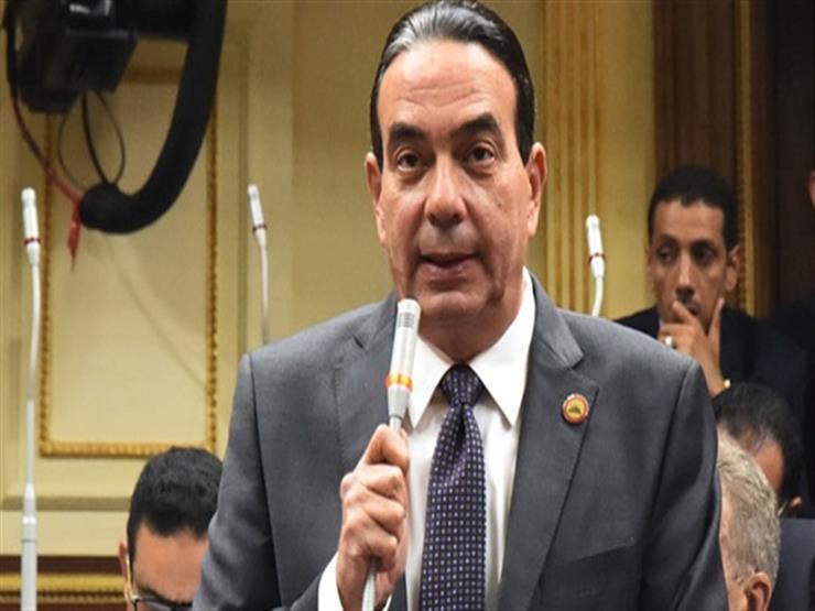 """برلماني لرئيس بعثة """"الأمم المتحدة"""".. ماذا قدمت المنظمة لمصر في ملف الهجرة غير الشرعية؟"""